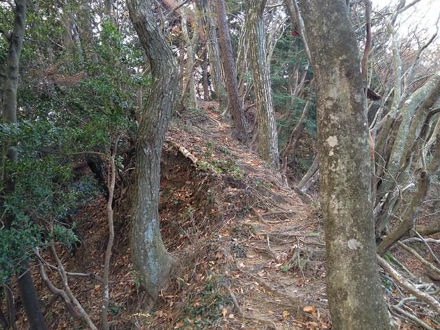 鎌ヶ岳 馬の背尾根登山 やせ尾根