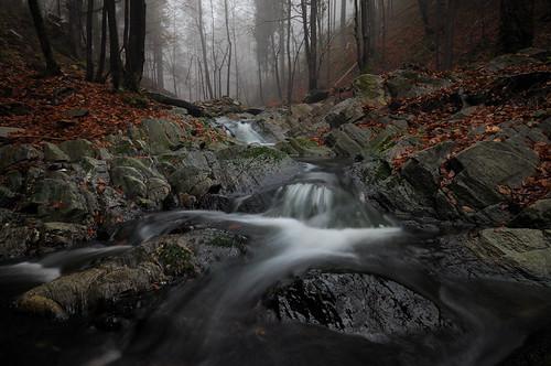 wood longexposure autumn winter mountains tree fall misty fog waterfall haze rocks stream czech poland falls le leafs krkonose