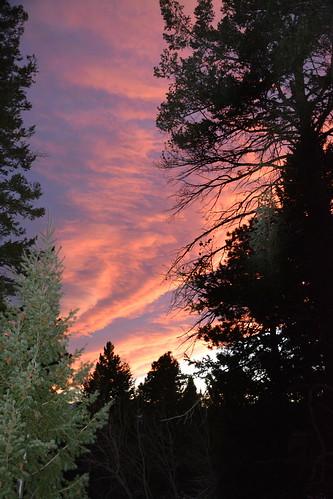 sunset conifercocolorado