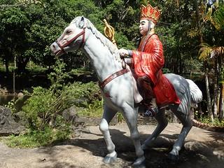 King's stallion