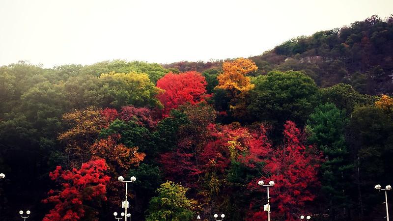 oktoberfest-bear-mountain-3