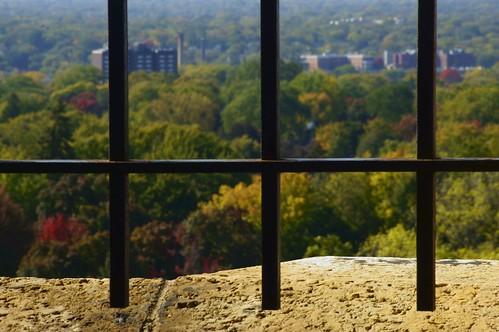 autumn trees usa 3 color window minnesota three iron dof bokeh watertower neighborhood windowview framing saintpaul historicbuildings ironbars stonewindow autumnsplendor hww tokinasd70210mm sonynex5n windowwednesdays sonynexwithalternativelenses threeverticalbars