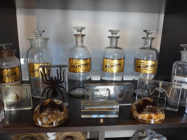 Fivehands bugs & bottles