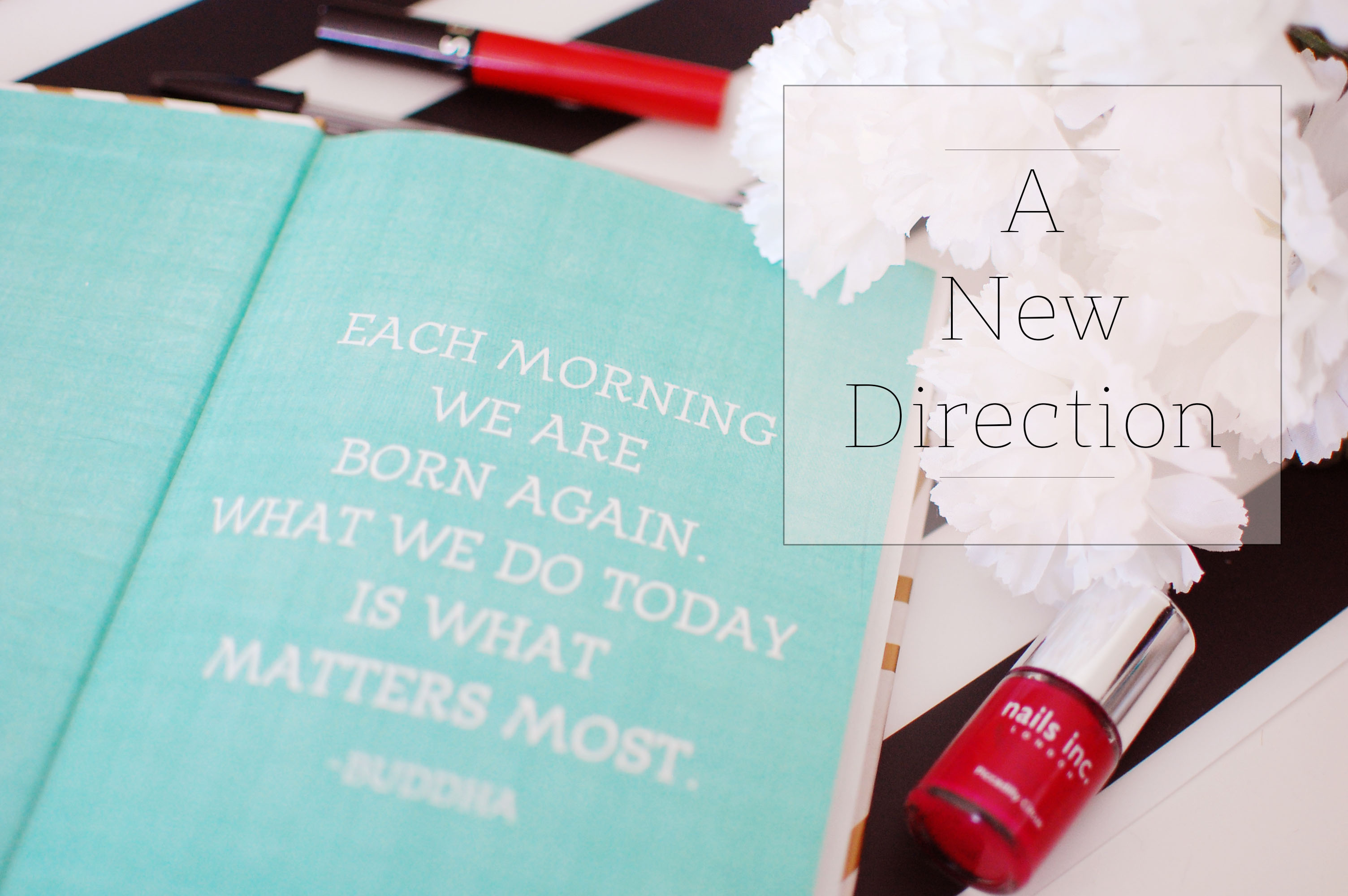 NewDirection Blogpost 2