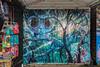Camden Himbad 2014-10-17 (IMG_3312-4)