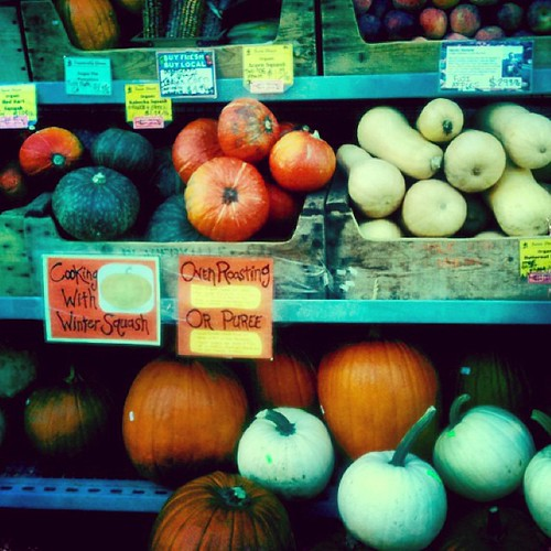 It's pumpkin season! And we don't mean that artificial flavor stuff! What are your pumpkin plans this harvest season?
