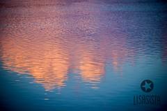 Milkshake Lake