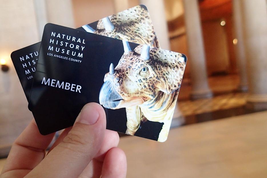 082114_naturalHistoryMuseum04