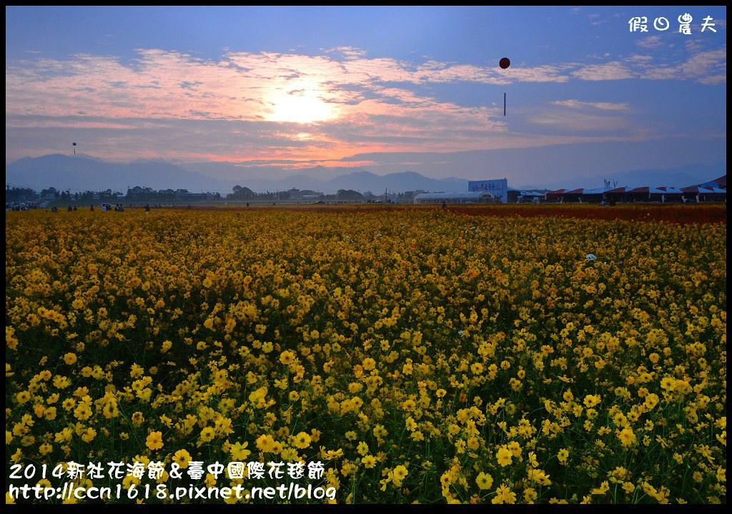 2014新社花海節&臺中國際花毯節DSC_4829