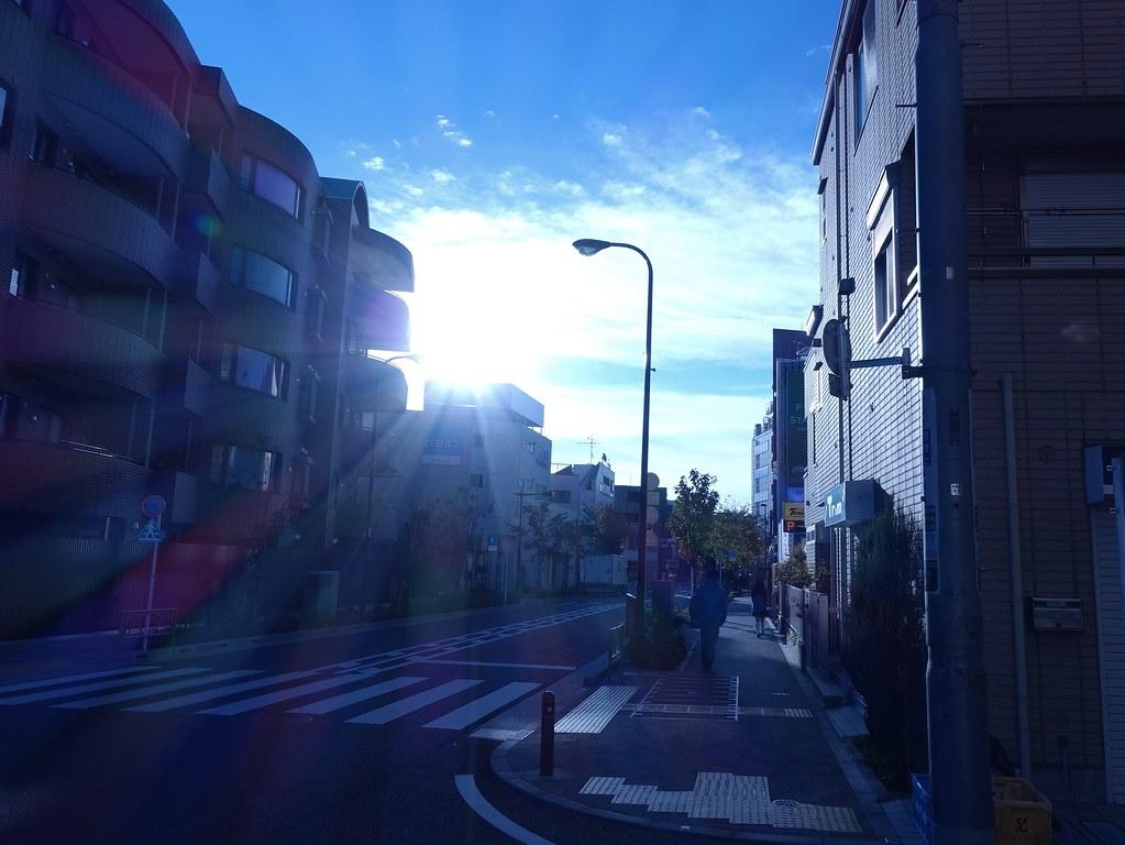 朝 冬 ブルー
