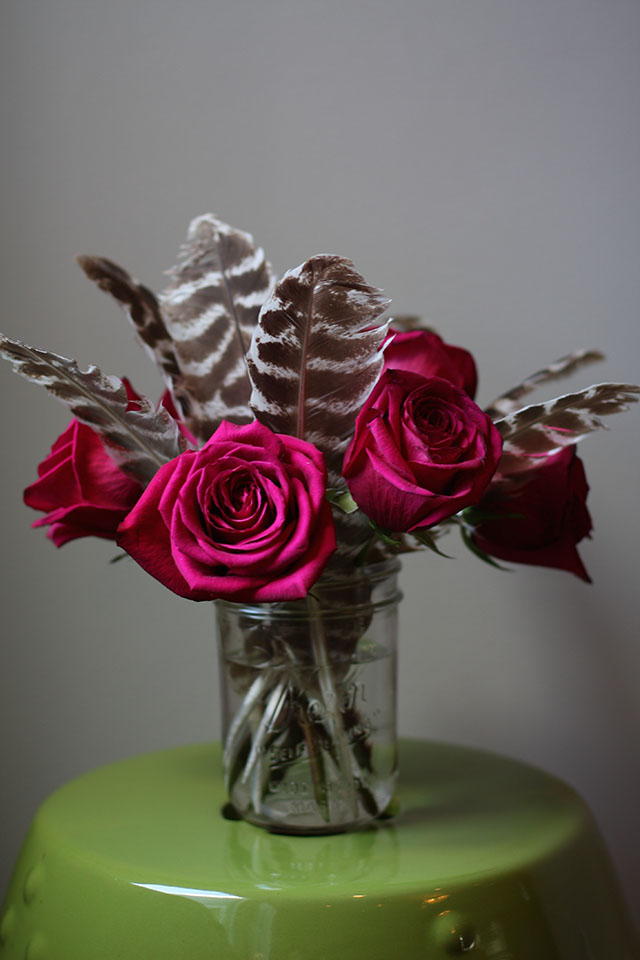 roses & feathers
