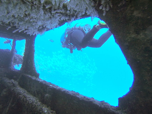 Diving in Oahu