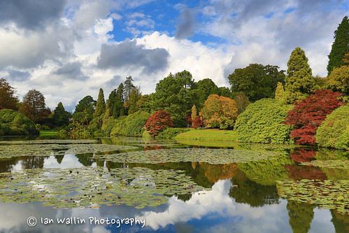 park trees house color colour water canon hdr sheffieldpark canon1740f4l sheffieldparkhouse canon5dmkiii