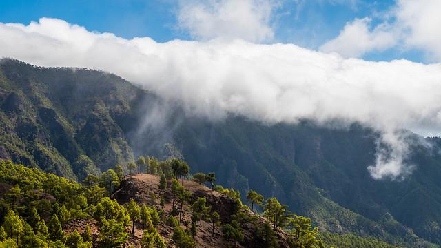 La Palma - Cloud Sheets