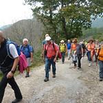 Ruta Puentes del Monte Ucieda