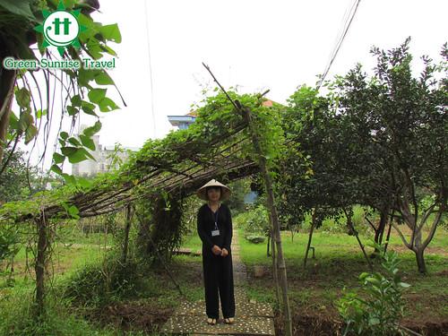 mekong delta full day tour