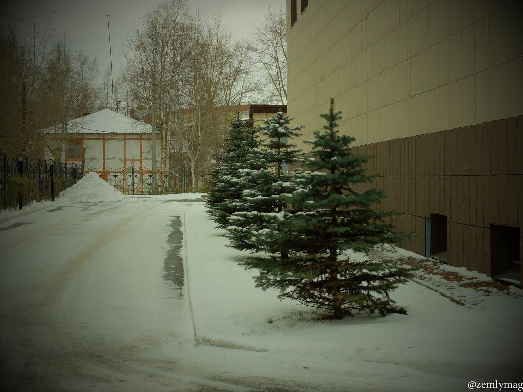 sur_1vkr_zima-36
