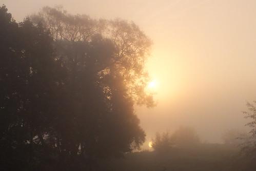 morning sky mist fog sunrise river october r lithuania rytas lietuva nemunas dangus prienai rūkasjaninaleonavičienė