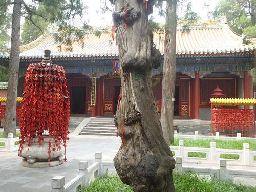 Beijing-Parc Beihai-j2 (20)