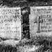 Michael's Last Cemetery