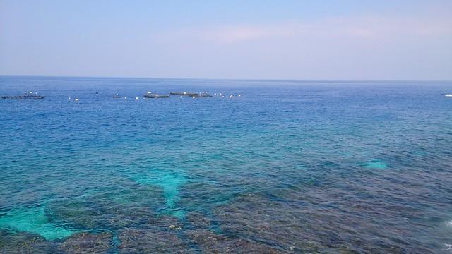 沙瑪基露營區緊鄰肚仔坪潮間帶和珊瑚保育區,又是海龜產卵處,BOT案恐將嚴重影響附近海域生態和海龜棲息地;攝影:李育琴。