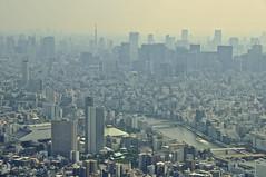 Urban 都市環境