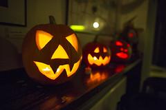 Festival otrlého diváka - halloweenský speciál