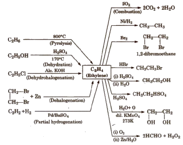 CBSE Class 11 Chemistry Notes : Hydrocarbons – AglaSem Schools