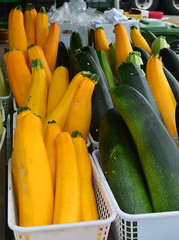 Zucchini [Kitchener - 14 August 2014]