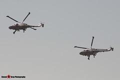 ZD251 & ZD261 - 251 & 437 - Royal Navy Black Cats - Westland WG-13 Lynx HAS3 & HMA8 - Fairford RIAT 2006 - Steven Gray - CRW_0857
