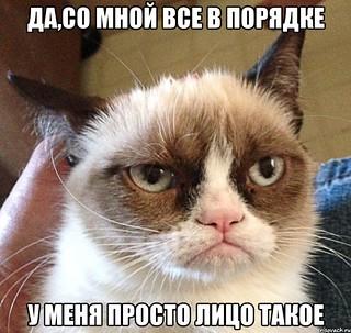 kotttt_28410319_orig_