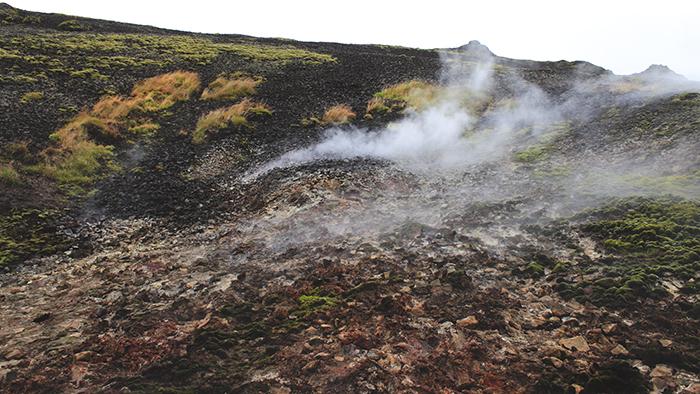 Iceland_Spiegeleule_August2014 106