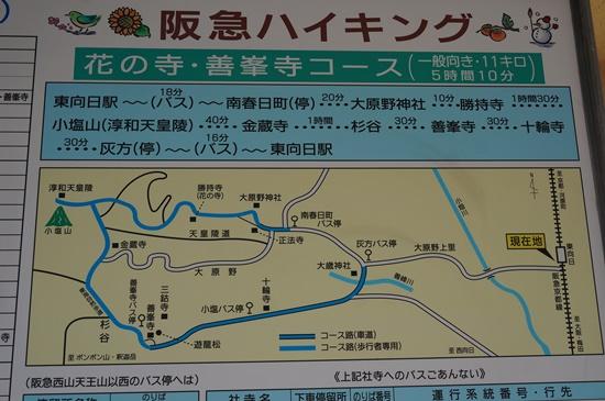 shoujiji59