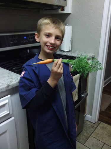 Oct 8 2014 Carrot from garden