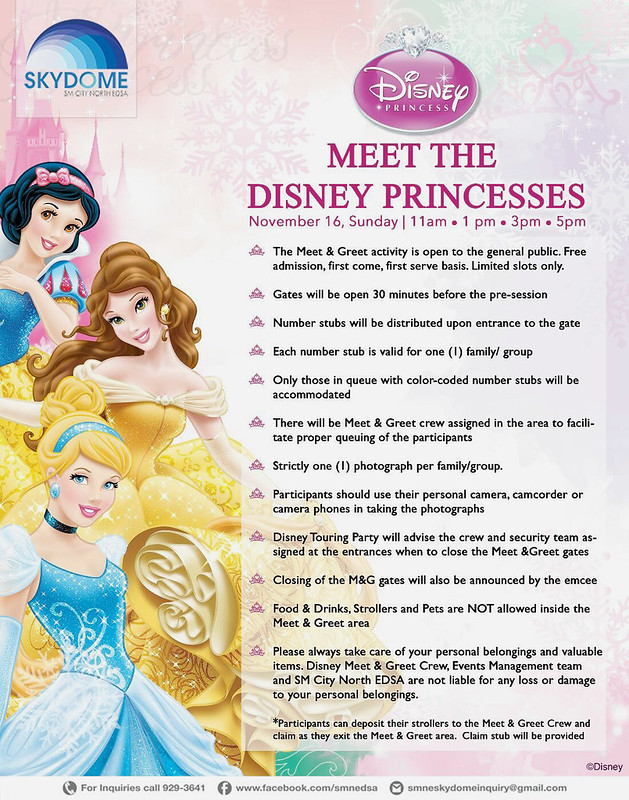 Meet the Disney Princess at Skydome