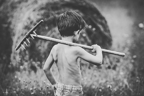 Toca cosechar... #mybeautifulmess #photoshoot #entrelaretinayelcorazon #pulgasenelcorazon #dayeleventh #farmer #harvesttime #blackandwhite #sesionesconduende