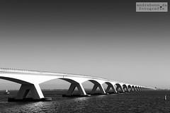 Zeebrug