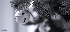 Weihnachtszeit, Chrismastime