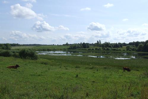 latvia ciblamunicipality blontiparish ciblasnovads blontupagasts panoramio