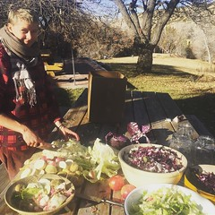 making saurkraut for standing rock -- thank you to copperpot farm for donated bokchoy, green tractor farm for radishes
