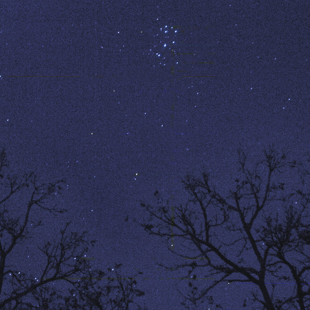 Pleiades Rising Over Wingra Park