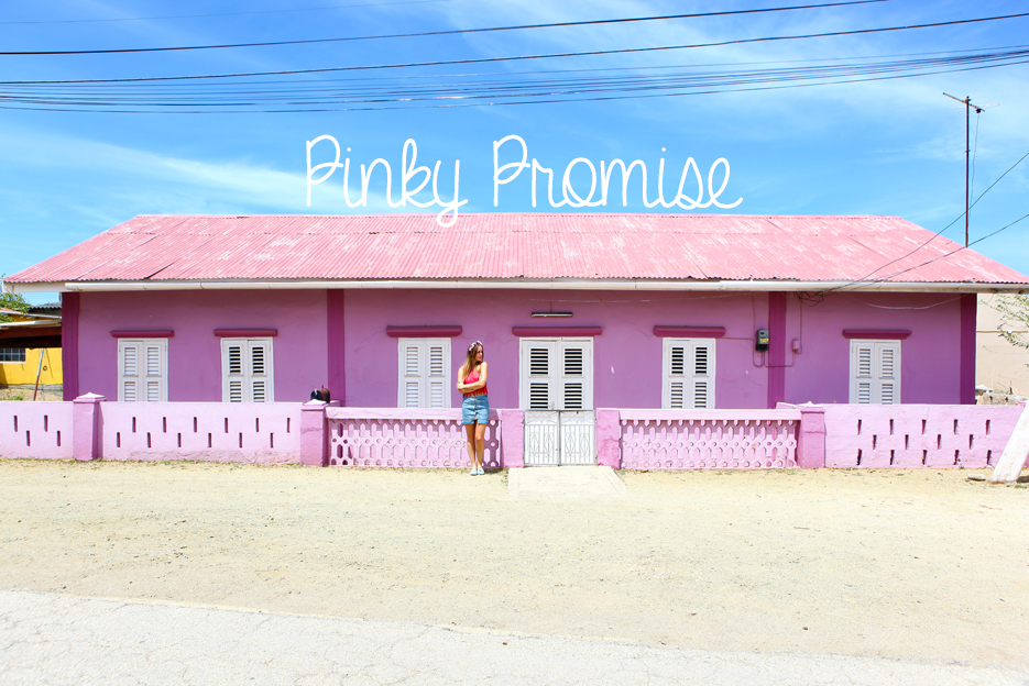 POSE-pink-promise-1
