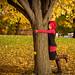 Tree Hugger by alisatchu