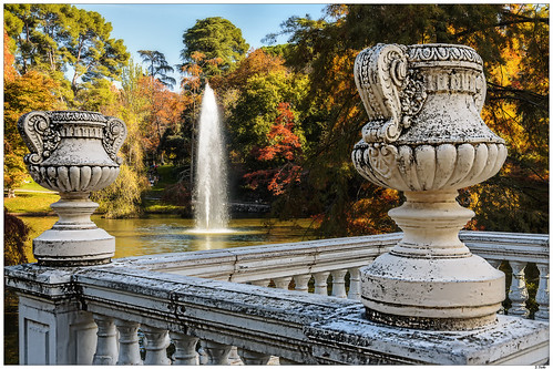 madrid camera city travel flowers autumn trees light people sun color colour art fall love nature water forest canon vintage landscape happy photography hope paint alone view memories dream free away dreams indie decor happines