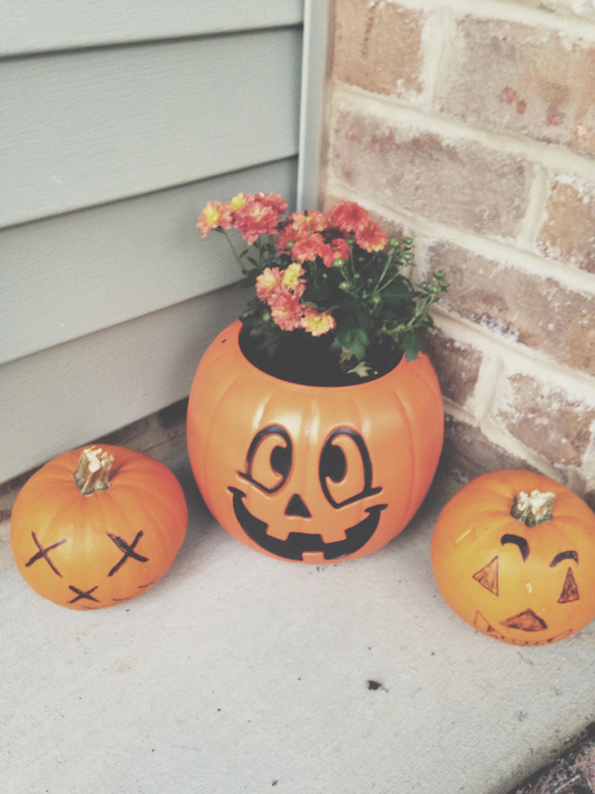 fall2014_2