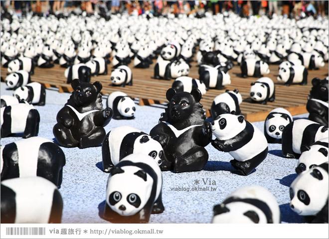 【台中】大都會歌劇院~可愛紙熊貓大軍來襲!台中七期的新亮點!13