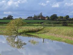 River Adur at Henfield