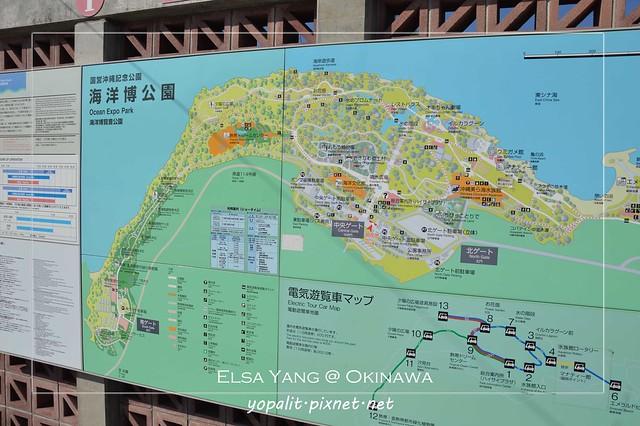 冲绳机场到恩那村北部海边饭店-利木津巴士