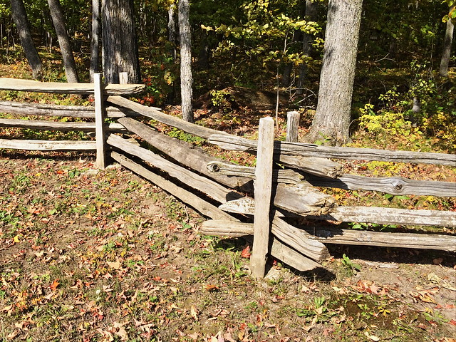 Split-rail fence 2-20141012