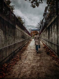 2014-10-16_20-26-23_IMG_9011